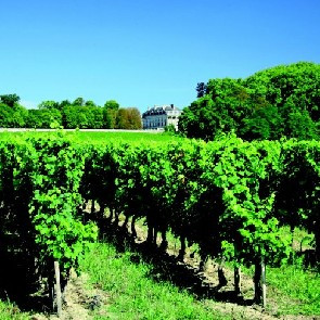 ProDégustation Dijon