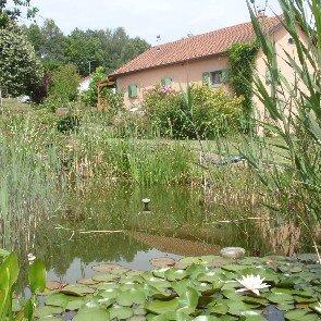 Chambres d'hôtes et Cabanes de La Louvière