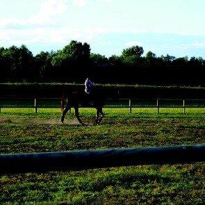 Centre Equestre de Beaugency