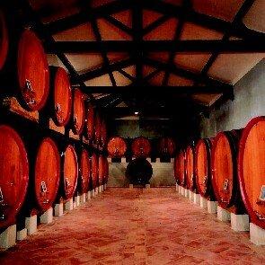 Pavillon des Vins Skalli