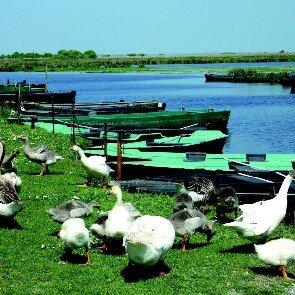 Les Chaumières du Lac**