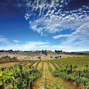 ProDégustation Bordeaux