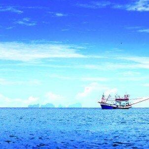 Visita guiada y paseo en barco